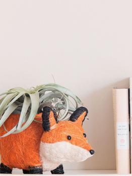 商品Fox Planter Coir Planters图片