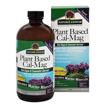 商品Natures Answer Plant Based Calcium Magnesium Liquid Vanilla Cream, 16 Oz图片